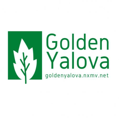 Golden Yalova Resort